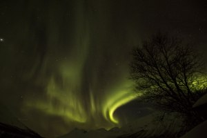 aurora21_dim